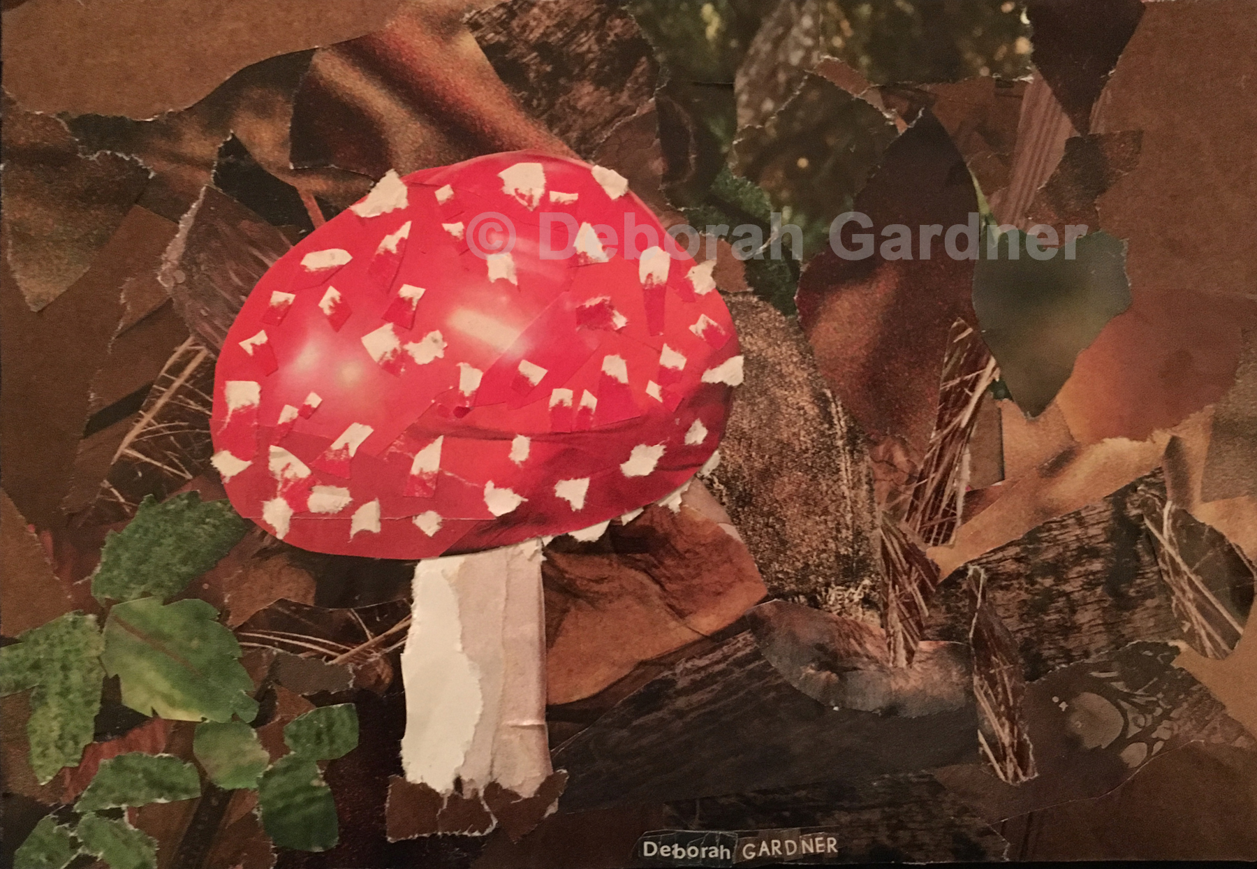A collage depicting an Amanita muscaria mushroom––a classic red cap with white spots and a white stem.