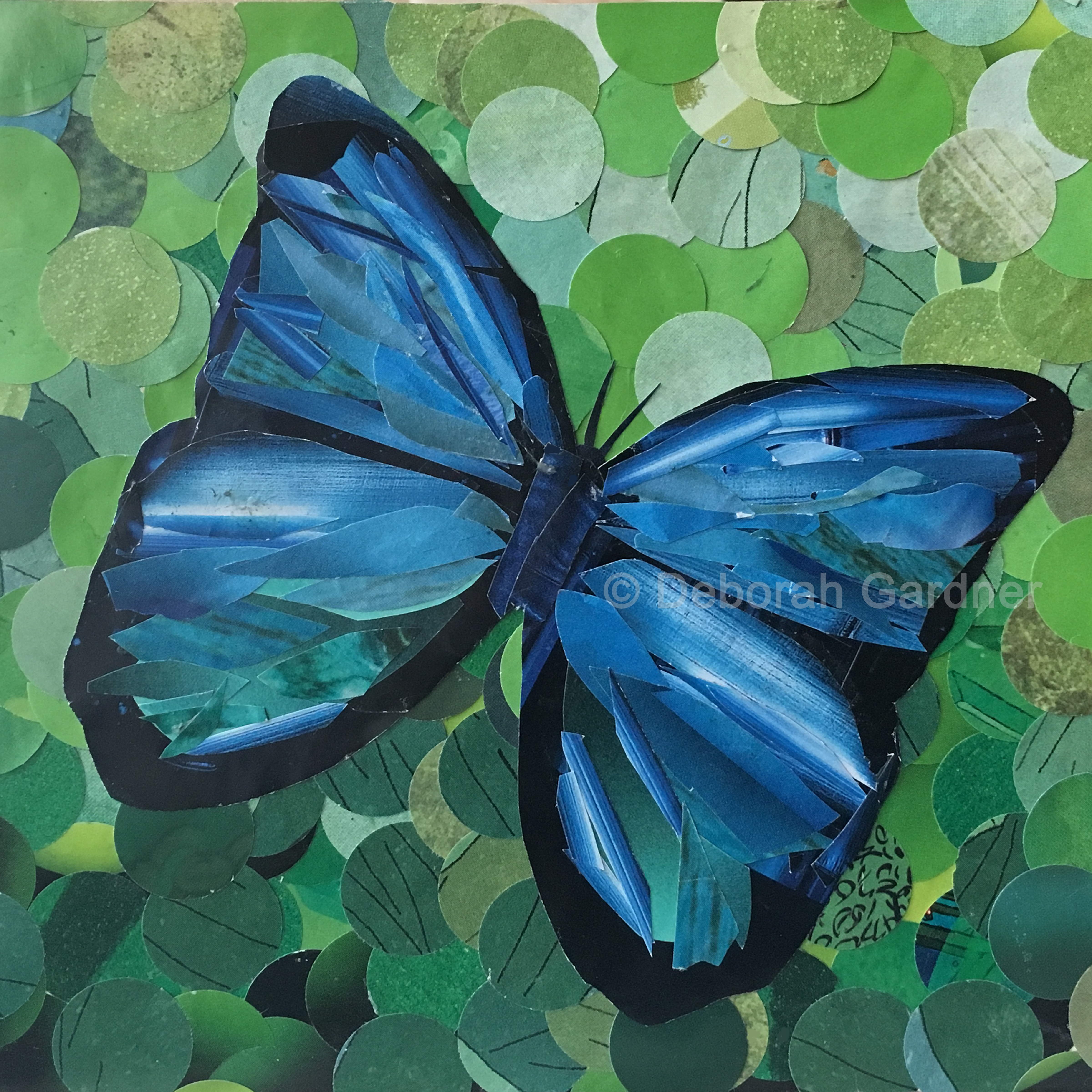 Square collage of a blue morpho butterfly on a green background